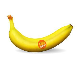 banane et environnement