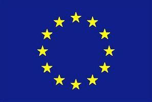 Oiseaux menacés : éviter le chant du cygne avec une nouvelle directive européenne