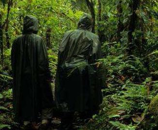 Projet 2009-2010 : Corridor biologique en Amérique centrale