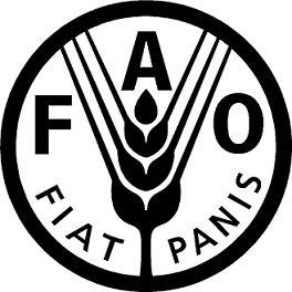 Pêches et aquaculture sous la menace du changement climatique selon la FAO