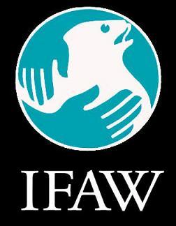 IFAW se mobilise pour sauver 60 éléphants au Malawi