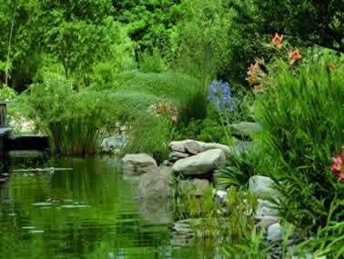 A la découverte du jardin aux plantes parfumées de la Bouichère à Limoux