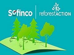 Sofinco-70-ans-reforest-action-70000-arbres-plantes-en-France